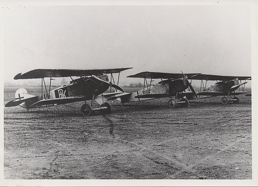 Photograph of three Fokker DVII airplanes on the field.